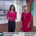 Allison Chinchar facelift body measurements lips